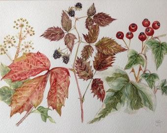 Original Watercolour Painting LEAVES AND BERRIES Wall art, Watercolor,Wall decor,Botanical art,A4,Original watercolor,Small painting, Leaves