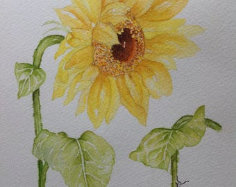 Original Watercolor Painting SUNFLOWER AND FRIEND, Watercolour Flowers,Wall Art, Sunflower, Sunflower Painting, Kitchen Wall Art, Wall Decor