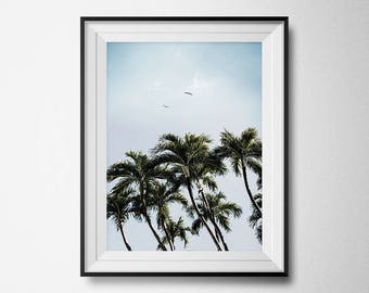 Tropical Print, Botanical Wall Print, Beach House Decor, Coastal Wall Art Prints, Palm Tree Print, Tropical Wall Art, Summer Decor