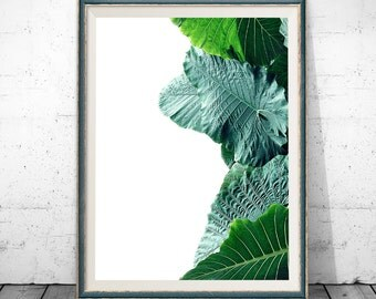 Tropical Print, Nature Photography, Print, Botanical Print, Wall Art, Posters, Prints, Leaf Print, Tropical Decor, Large Poster Print