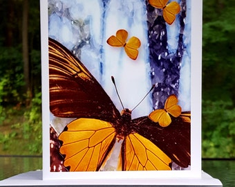 Four Butterflies Color Photo Designed Blank Note Card, Glossy Note Cards, with Envelope