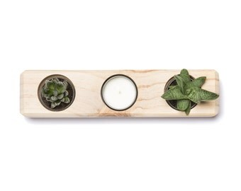 Succulent Planter | The Rec. Wooden Succulent Planter, Hand Made.