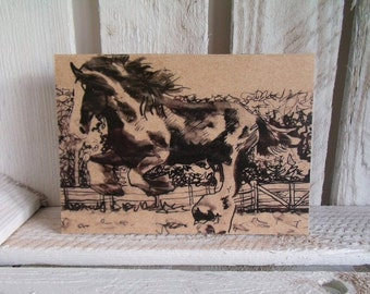 Horse Eco Notebook / Sketchbook / Jotter
