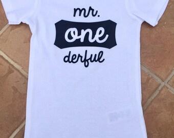 FREE SHIPPING / Mr ONEderful shirt/ onesie / 1st birthday / baby boy