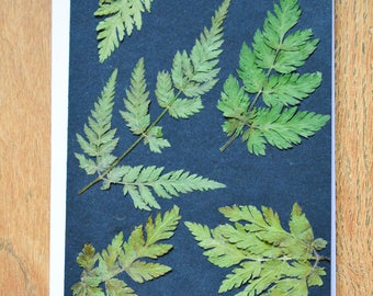 Hand made real pressed flower fern leaf blank card