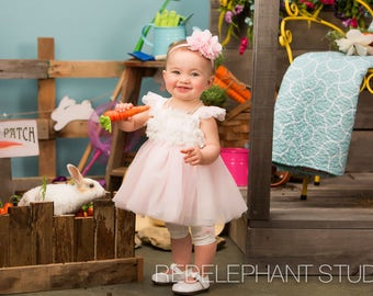 Spring/Easter Outdoor Setup with Carrot Garden and Flowers Digital Background/Digital Backdrop Overlay