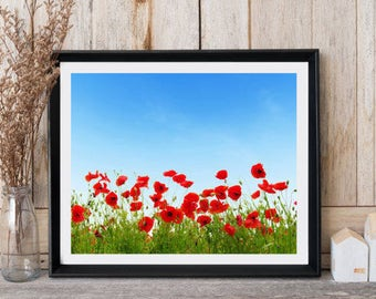 Red poppies wall art, Poppies print, Poppies field, Modern wall decor, Office wall art, Spring art, Nature art, Minimalist print, Red poppy