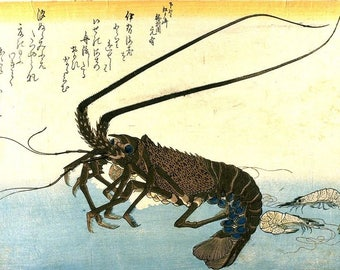 Crawfish Spiny Lobster & Shrimp Japanese Reproduction Woodblock Picture Print Ando Hiroshige A4