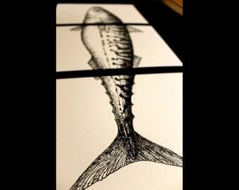 Mackerel ink art drawing and prints, black and white ink art drawing, animal art, fish black and white ink art
