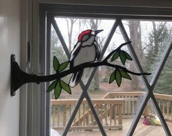Woodpecker on a Branch
