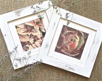 Wooden Prints, Nature Prints, Framed Prints, Framed Nature Prints, Framed Botanical Prints, Wall Art, Wall Decor, Natural Decor