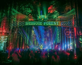 "Sherwood Forest Large 24x36"" Poster Print"