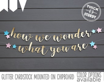 how we wonder what you are banner, with stars, Gender Reveal banner, Twinkle little star, Baby Shower banner, glitter party decorations