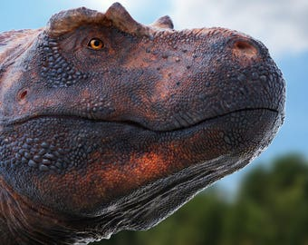 Tyrannosaurus rex print