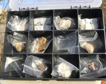 Complete Fossil Set [FS9505]
