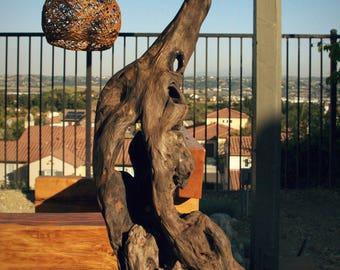 Wax Gourd Wood Lamp Root Art Nature Handmade