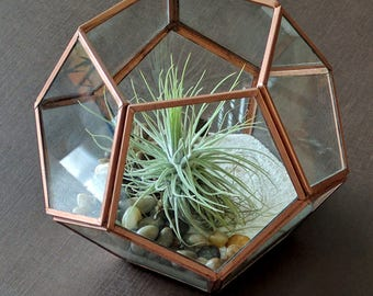 Geometric Copper Air Plant Terrarium with Pebbles, White Sand and Large Air Plant Kit - Best Seller