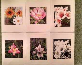 Blank Greeting Cards (6 card variety pack)