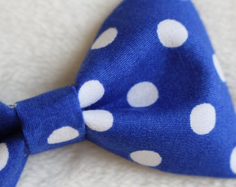 "Cat Bow Tie ""Cookie Monster"""