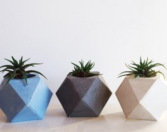 plaster pot gypsum pot concrete pot pot for succulents