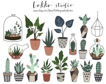 Succulent / Clipart / Cactus / Terrarium / Cacti / PNG / Floral / Wedding / Plant / Vector / Digital / printable