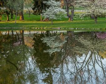 Springtime Park, Pond, Park, Spring, Blooming Trees, Pennsylvania, Wall Art