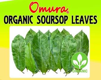 Omura ORGANIC SOURSOP LEAVES Graviola Guanabana Guyabano Carrosol