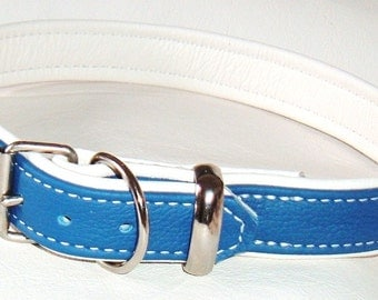 Blue on White leather dog collar with White Stitching