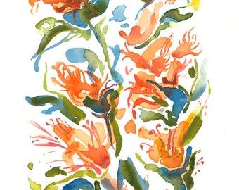Australian Blooms (Orange)