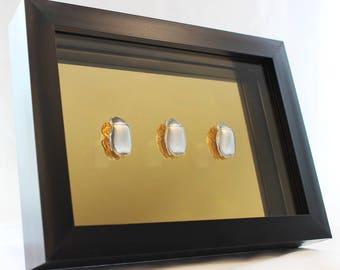 "Framed Wall Art - Silver Beetles on Gold Mirror 5"" x 7"" Black/ White Frame"
