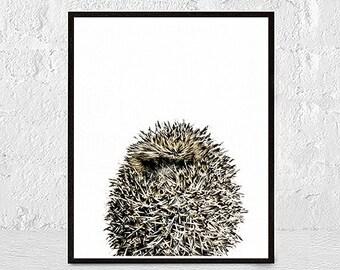 Hedgehog Print, Hedgehog Photo, Hedgehog Wall Art, animal print, Nursery Decor, Animal Photography, nursery animal wall art