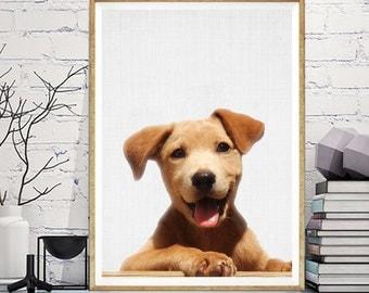 Dog Print, Dog Art, Dog Photo, Happy Dog Photography Print, Modern Minimal Dog, Printable Dog Art, Instant Download