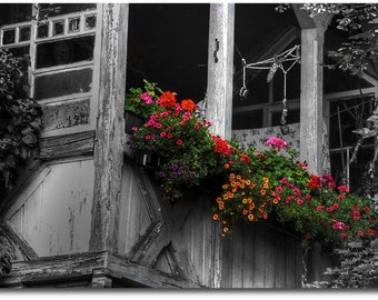 On canvas canvas flowered balcony