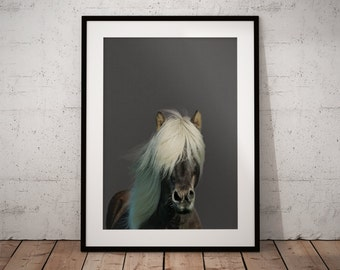 Wall print horse, Lake house wall decor, Modern farmhouse art, Horse photography, Nursery Horse, Horse art, Minimalist horse art, Horses art