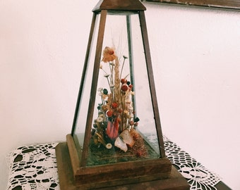 Vintage Pyramid-Shaped Butterfly display