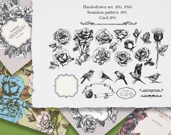 Hand-drawn set of Roses & Birds