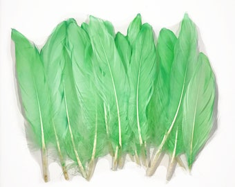 """6-8"""" All Green died Natural Goose Feathers"""