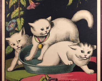 Fabulous 19th Century 3 White Cats Print Lithograph Book Plate Very Frameable