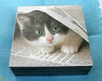 Wooden box cat and newspaper, handmade box, home decoration, box cat, keepsake box