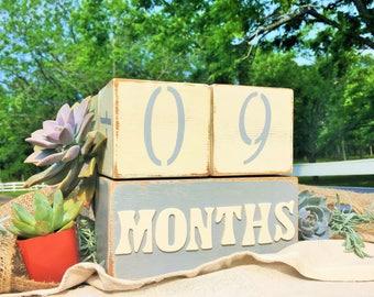 Baby Milestone Blocks - Baby Age Blocks - Nursery Decor - Baby Month Blocks - photo prop blocks - Baby Stat Blocks - week blocks - age block