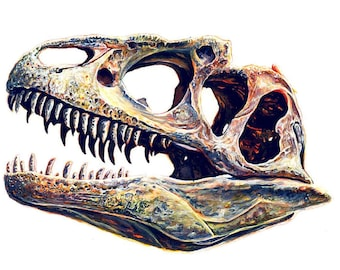 Dinosaur Skull Drawing