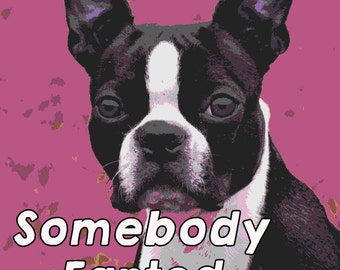Somebody farted Boston Terrier custom magnet