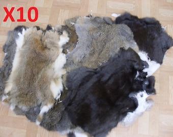 LOT Of 10 RABBIT SKIN Hide Fur Pelt Craft