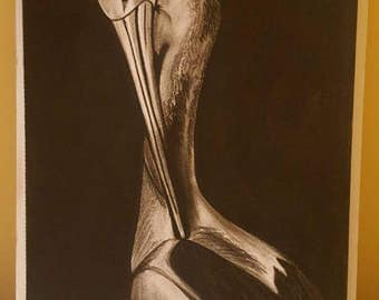 Charcoal on paper drawing of a bird (stalk)