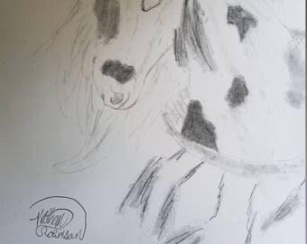 Horse's Dream