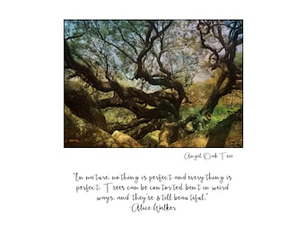 Angel Oak Winding Branches