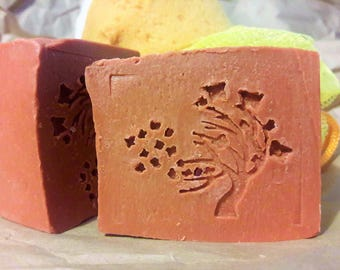 Natural Bar Soap- Second Chances - Moroccan Clay