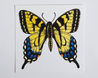 Butterfly. Eastern Tiger swallowtail butterfly watercolor and ink original art. Butterfly watercolor painting. Watercolor and ink original.
