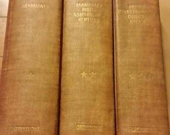 The Animal Kingdom Vol I, II, III