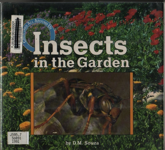 Insects in the Garden - D. M. Souza - Photographic Illustrations - 1991 - Vintage Kids Book